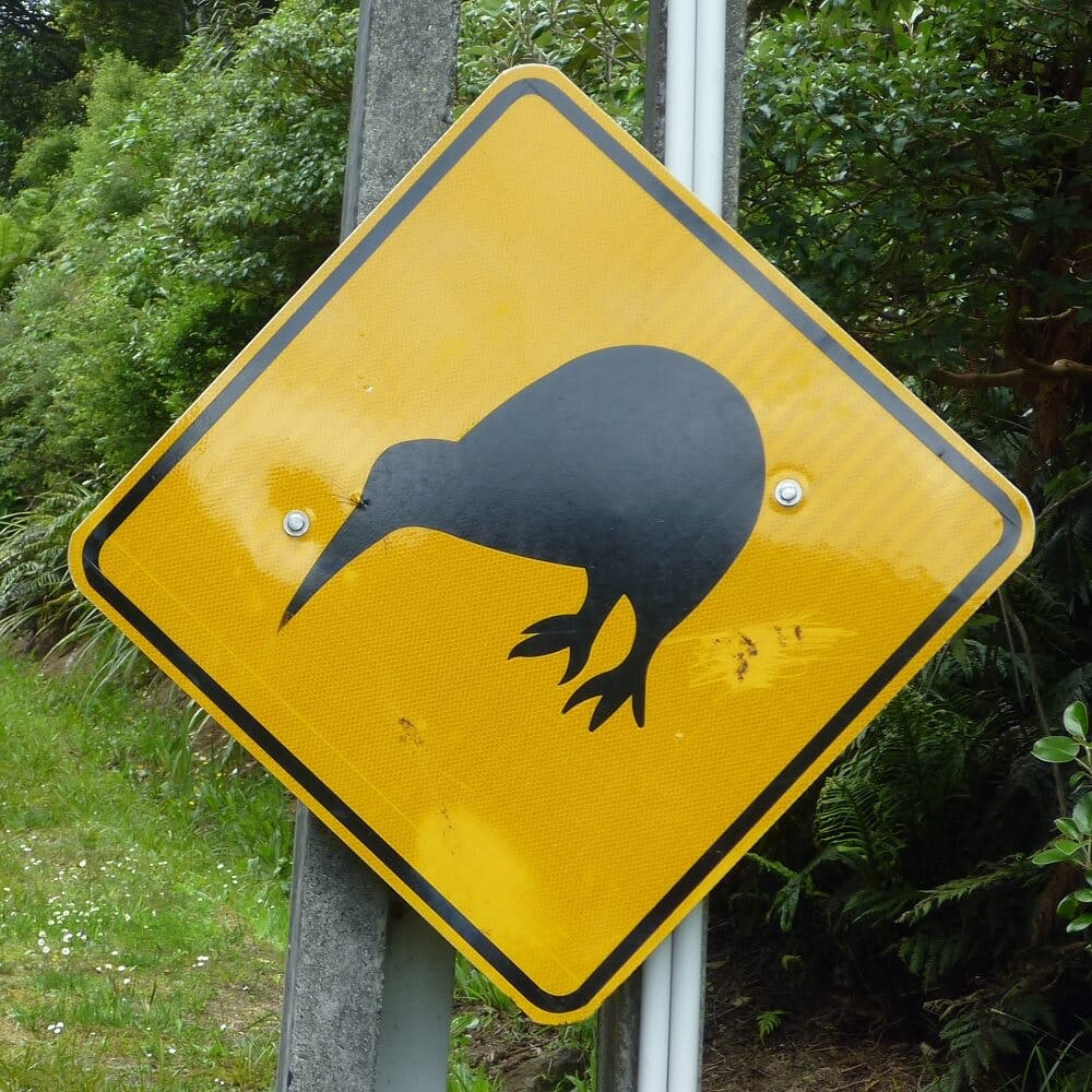 Kiwi Sign